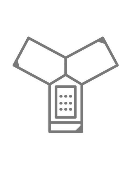 Audioconférence
